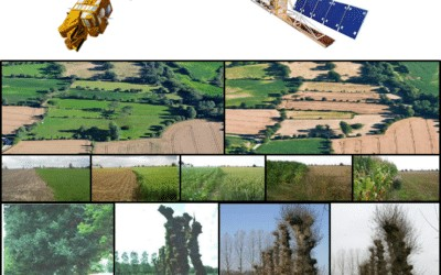 Dynamics of natural and agricultural landscapes: Contribution of Sentinel time series of images